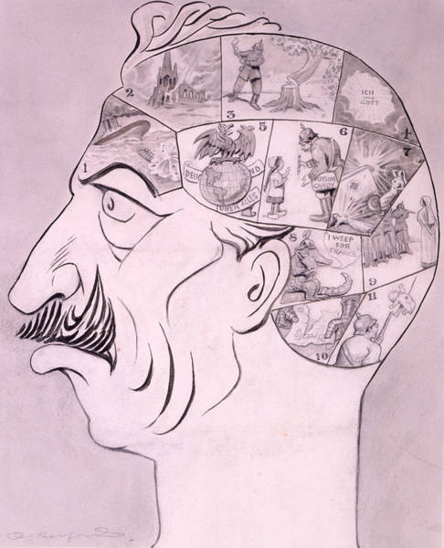 First Drawing - Phrenological Chart Of The German by Oliver Herford