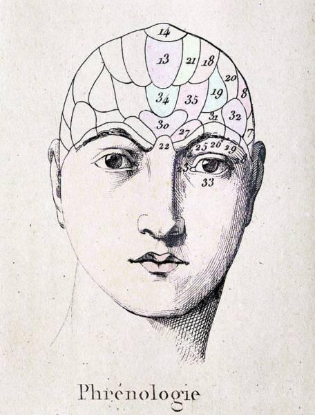 Traits Photograph - Phrenology Head Chart by Paul D Stewart