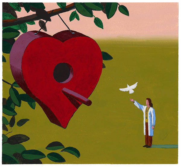 Physician Releasing Dove Art Print by Jonathan Evans
