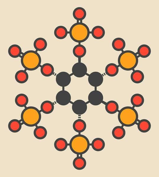 Ruminant Photograph - Phytic Acid Molecule by Molekuul