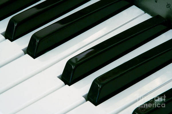 Photograph - Piano by LR Photography
