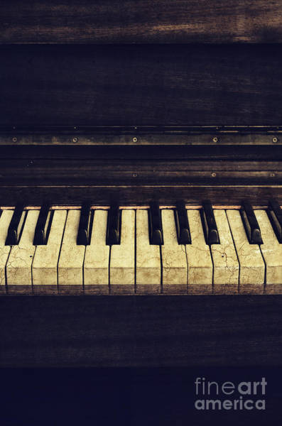 Musical Artists Photograph - Piano by Jelena Jovanovic