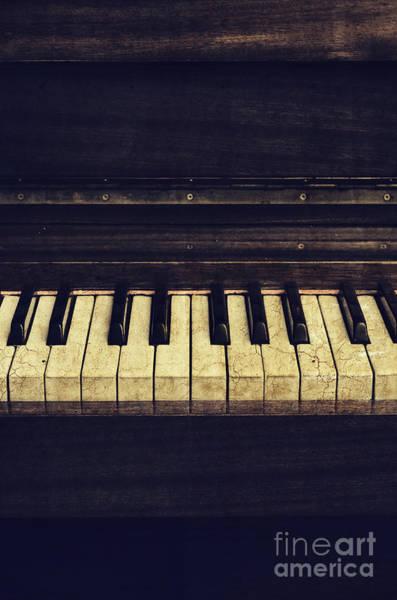 Photograph - Piano by Jelena Jovanovic