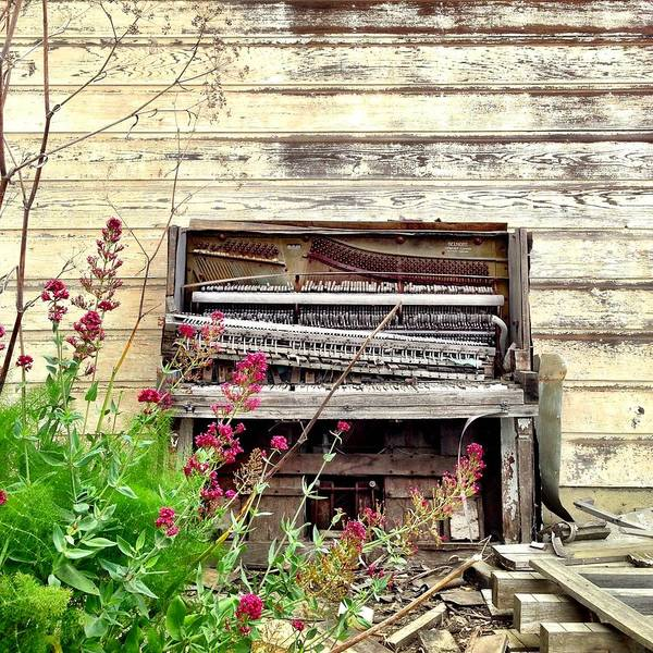 Old Wall Art - Photograph - Piano by Julie Gebhardt