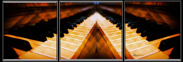 Photograph - Piano Keys Triptych by Ericamaxine Price