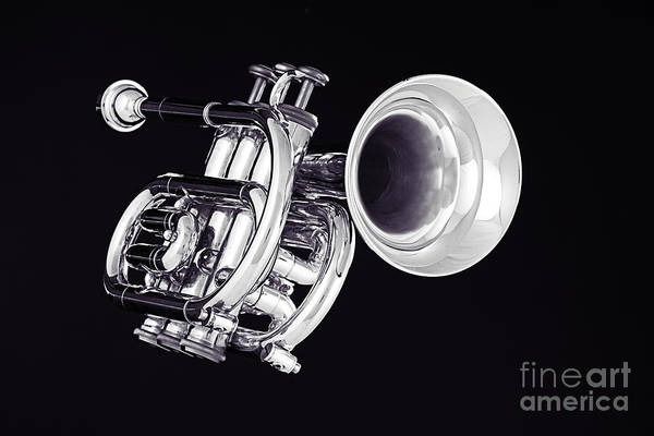 Photograph - Piccolo Trumpet Isolated In Black And White 3020.01 by M K Miller