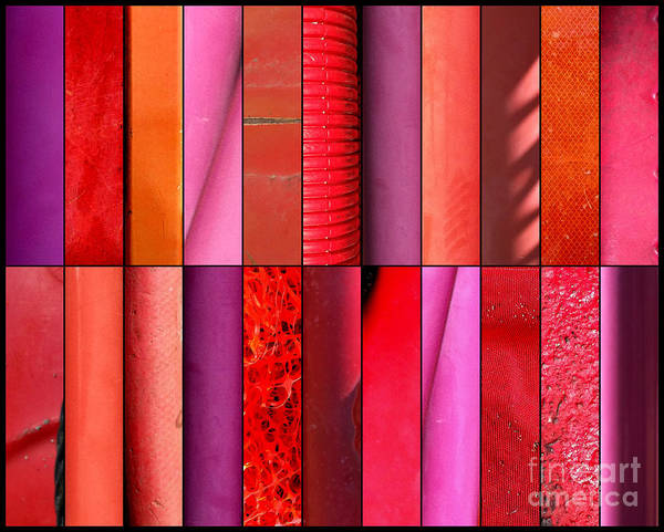 Photograph - Pick Color by Marlene Burns