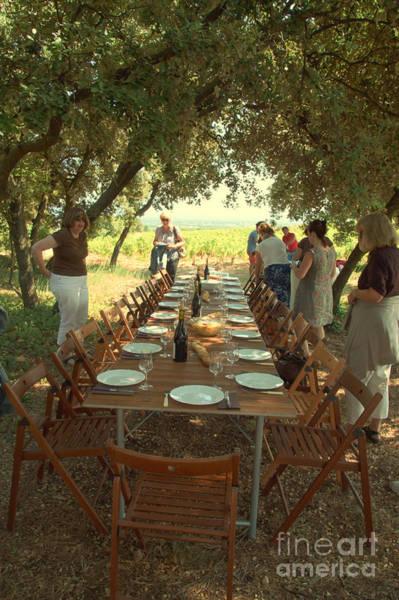 Chateauneuf Photograph - Picnic At The Vineyard by Anita Miller