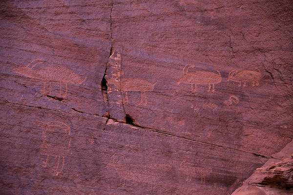 Navajo Indian Reservation Photograph - Pictograph Cave Art by Garry Gay