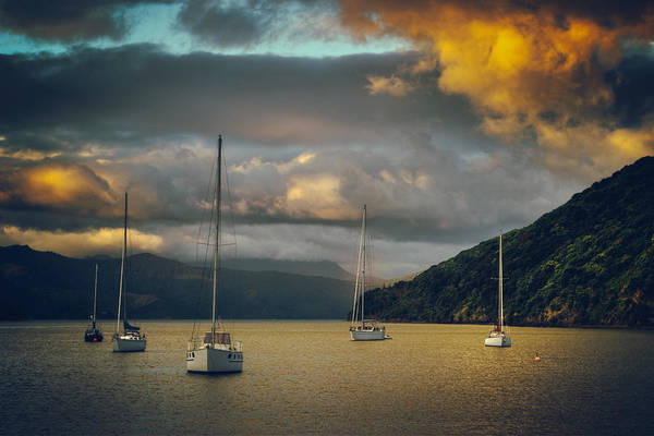 Queen Charlotte Sound Wall Art - Photograph - Picton Harbor Sunset by Jeff Parkes