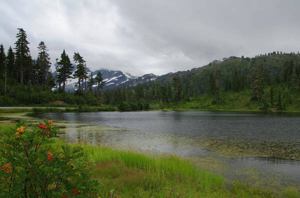 Photograph - Picture Lake On Mt. Baker by Marilyn Wilson