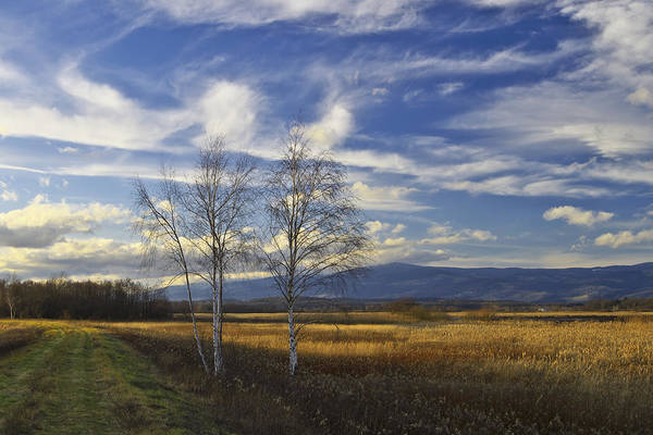 Photograph - Picturesque Landscape by Ivan Slosar