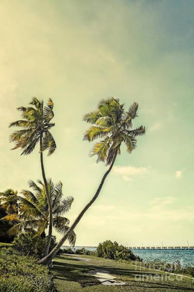 Bahia Honda Photograph - Piece Of Heaven by Evelina Kremsdorf