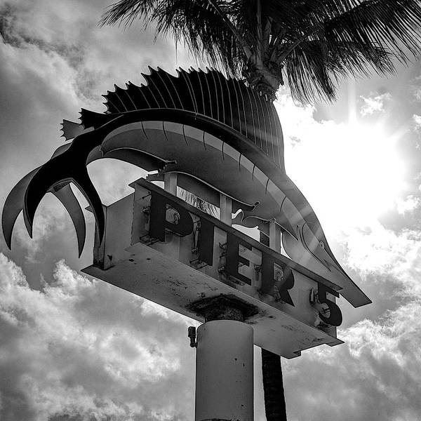 Wall Art - Photograph - Pier 5 Sign by William Wetmore