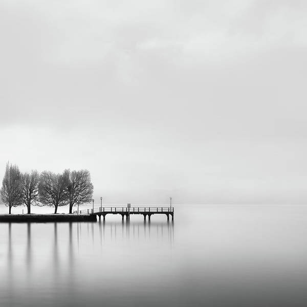 Wall Art - Photograph - Pier With Trees (2) by George Digalakis