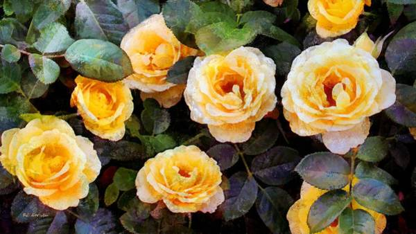 Painting - Pierre's Peach Roses by RC DeWinter