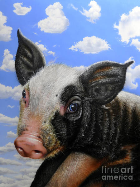 Pig Painting - Pig In The Sky by Jurek Zamoyski