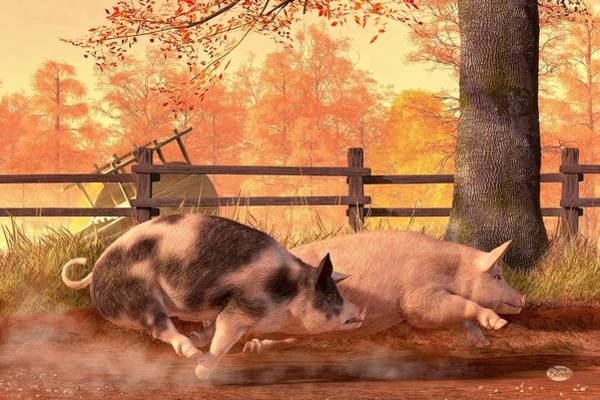 Babe Digital Art - Pig Race by Daniel Eskridge