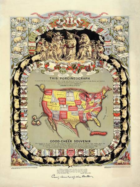 United States Territory Photograph - Pig-shaped Map Of The Usa by Library Of Congress