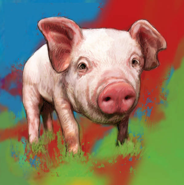 Pig Drawing - Pig Stylised Pop Modern Art Drawing Sketch Portrait by Kim Wang