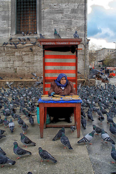 Photograph - Pigeon Lady by Arkamitra Roy