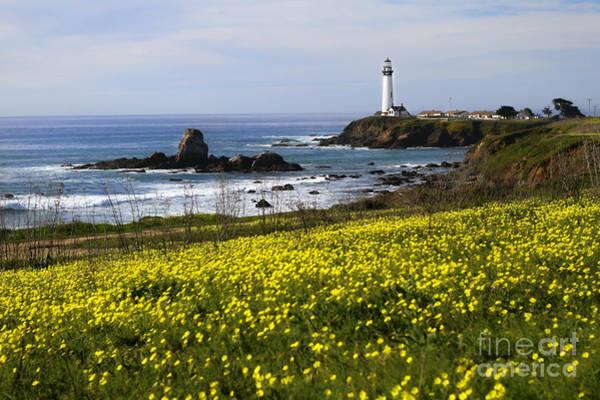 Wall Art - Photograph - Pigeon Point Lighthouse by Jennifer Ramirez