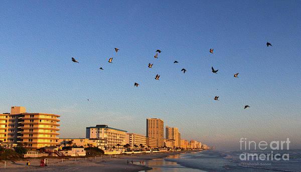 Photograph - Pigeon Retreat by Deborah Benoit