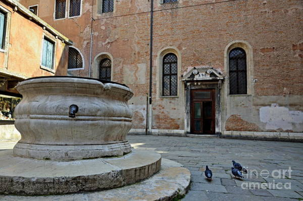 Wall Art - Photograph - Pigeons In A Courtyard By Well by Sami Sarkis
