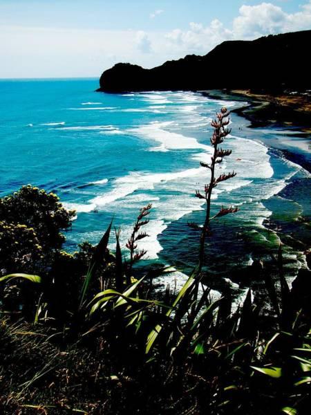 Pohutukawa Photograph - Piha Beach by David and Mandy