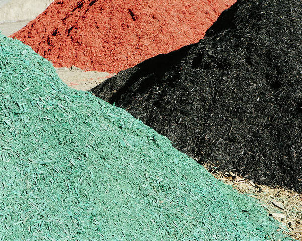 Material Photograph - Piles Of Multi-colored Bark Wood Chips by Mint Images - Paul Edmondson