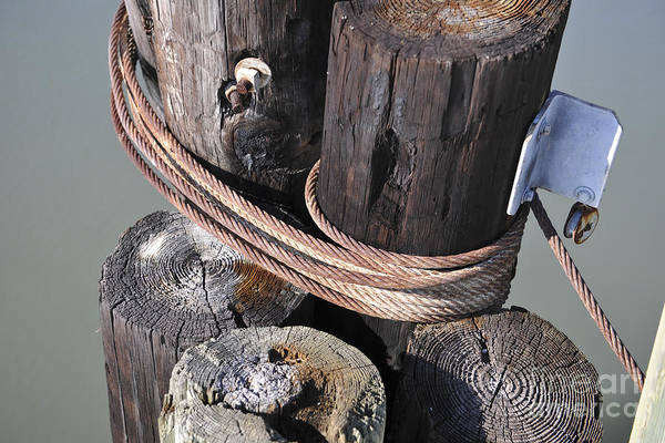 Photograph - Pilings by Dale Powell