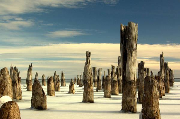Photograph - pilings II by Jeremiah John McBride