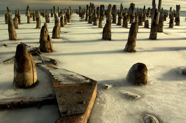 Photograph - pilings III by Jeremiah John McBride