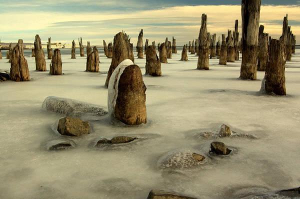 Photograph - pilings VII by Jeremiah John McBride