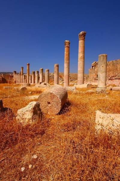 Artemis Photograph - Pillars Of Ruin by FireFlux Studios