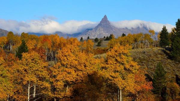 Photograph - Pilot Peak In The Fall by Tranquil Light  Photography