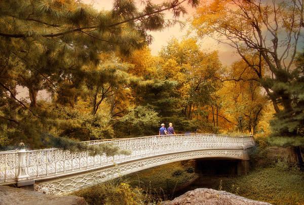 Bridge Bank Photograph - Pine Bank Arch by Jessica Jenney