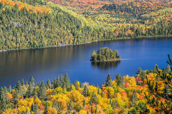 Photograph - Pine Island In Autumn by Pierre Leclerc Photography