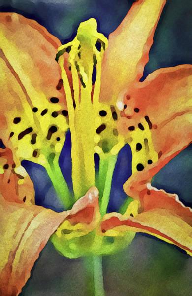 Digital Art - Pine Lily by Patrick M Lynch