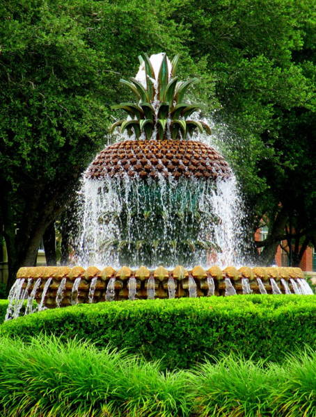 Battery Park Wall Art - Photograph - Pineapple Fountain 2 by Randall Weidner