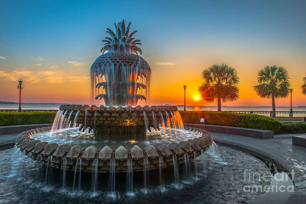 Photograph - Charleston Pineapple Sunrise by Dale Powell