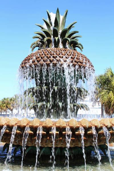 South Carolina Photograph - Pineapple Water Fountain In Charleston by Noderog