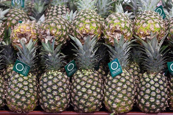 Photograph - Pineapples On Display In Store by Gunter Nezhoda