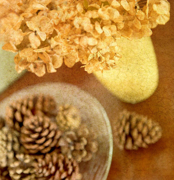 Pine Cones Photograph - Pinecones And Hydrangae by Rebecca Cozart