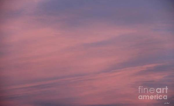 Photograph - Pink And Blue by Jon Burch Photography