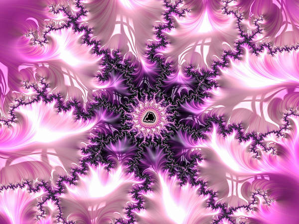 Pink And White Digital Art - Pink And Purple Soft And Creamy Fractal Art by Matthias Hauser