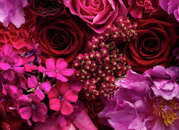 Photograph - Pink And Red Floral Arrangement, Detail by Jonathan Knowles