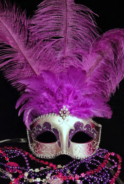 Photograph - Pink And Silver Mardi Gras Mask by Sheila Kay McIntyre