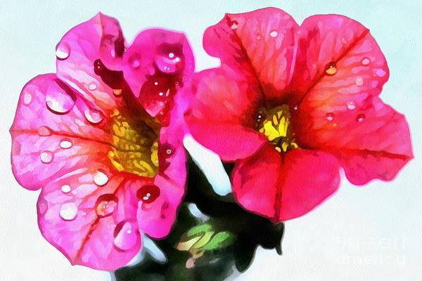 Petunias Photograph - Pink Beauties by Krissy Katsimbras