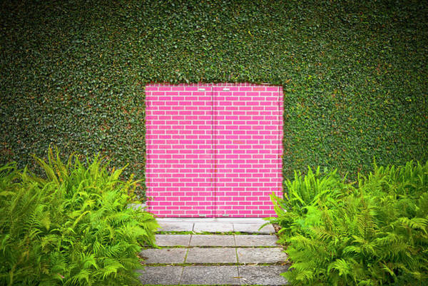 Bricks Photograph - Pink Brick Door by David Jordan Williams